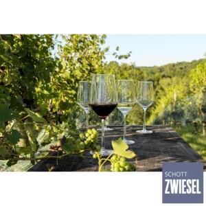 Cj. 6 Taças para Vinho Tinto 550ml Schott Zwiesel Pure de Cristal