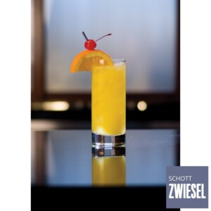 Cj. 6 Copos para Suco e Cerveja 311ml Schott Zwiesel Paris de Cristal