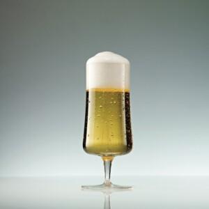 Taça para Cerveja Pilsner 283ml Schott Zwiesel Beer Basic 6 Peças de Cristal